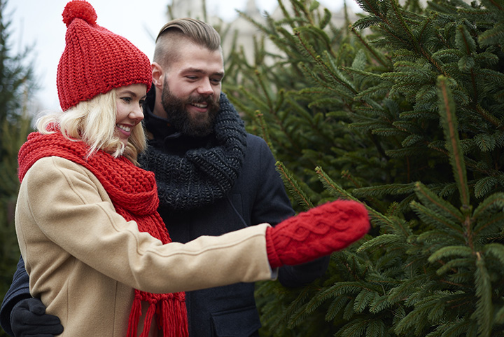 The 10 Best Christmas Tree Farms in Alabama!