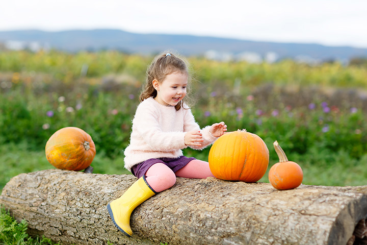 The 8 Best Pumpkin Patches in Alabama!