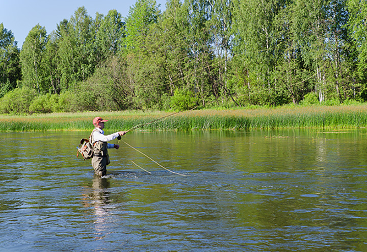 The 7 Best Fly Fishing Spots in Arkansas!