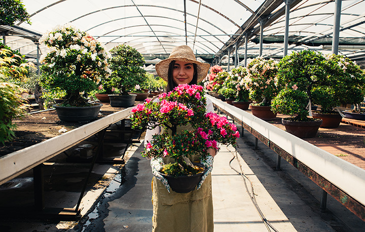 The 10 Best Garden Shops in Arkansas!
