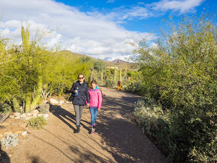 14 of the Best Free Things to Do in Arizona!