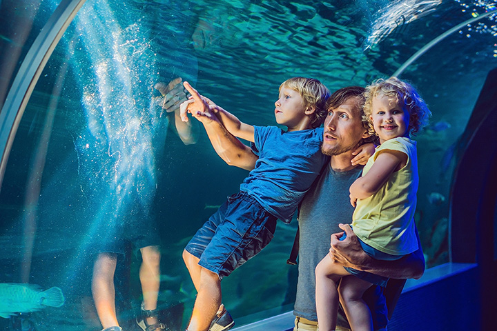 The 15 Best Family-Friendly Attractions in Colorado!