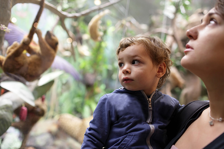 The 15 Best Family-Friendly Attractions in Connecticut!