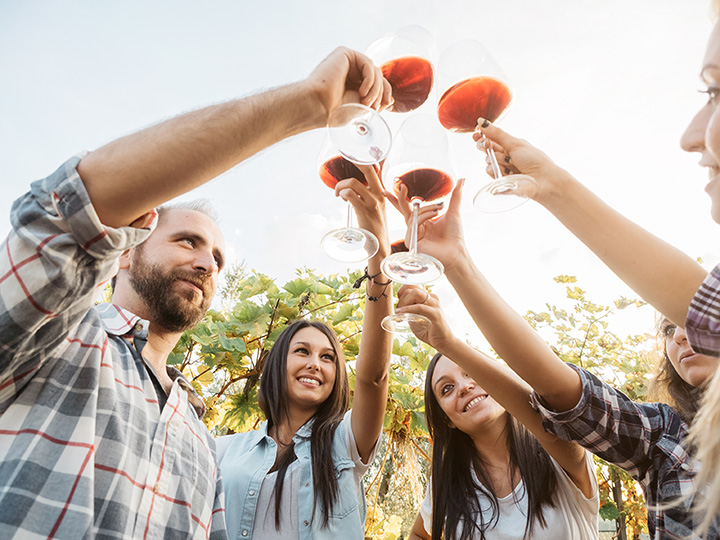 The 10 Best Wineries in Connecticut!
