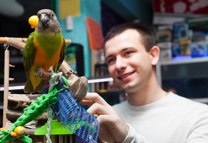 The 10 Best Pet Stores in Florida!