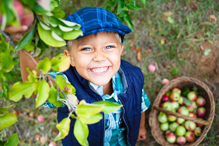 The 10 Best Apple Picking Spots in Iowa!