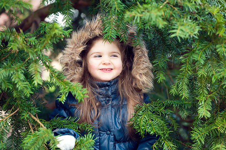 The 10 Best Christmas Tree Farms in Illinois!