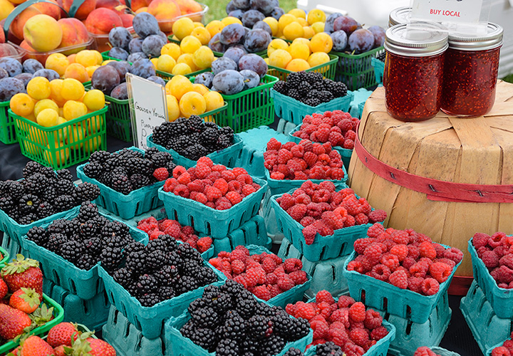 The 10 Best Farmers Markets in Illinois!