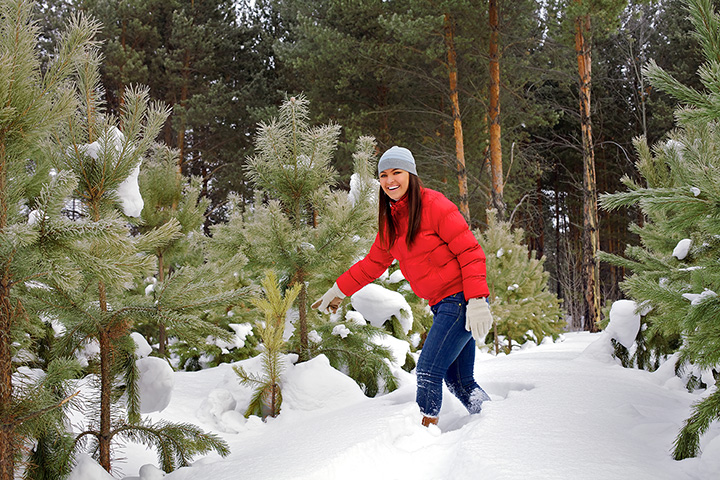 The 9 Best Christmas Tree Farms in Indiana!