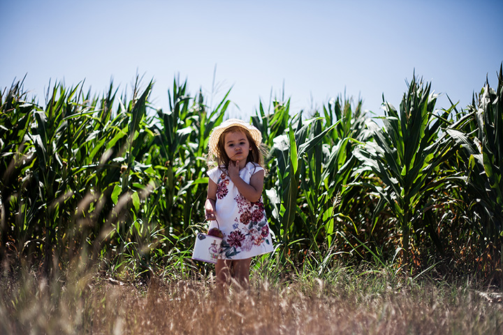 The 10 Best Corn Mazes in Kansas!