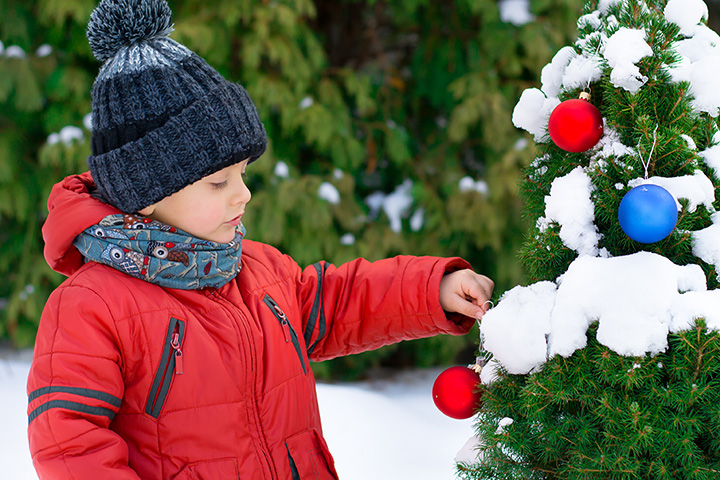 The 8 Best Christmas Tree Farms in Kentucky!