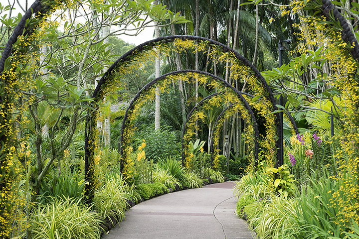 10 Beautiful Botanical Gardens in Louisiana!