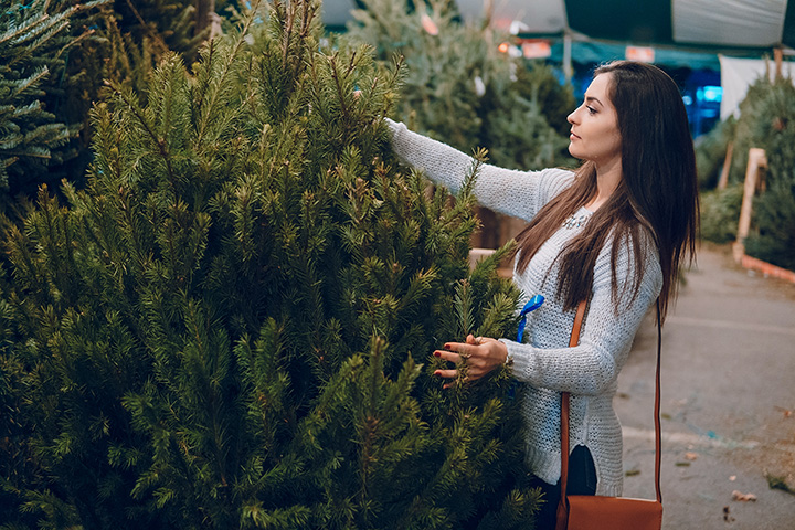The 10 Best Christmas Tree Farms in Louisiana!