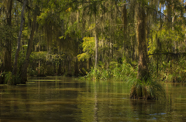 10 Best Myths and Urban Legends in Louisiana