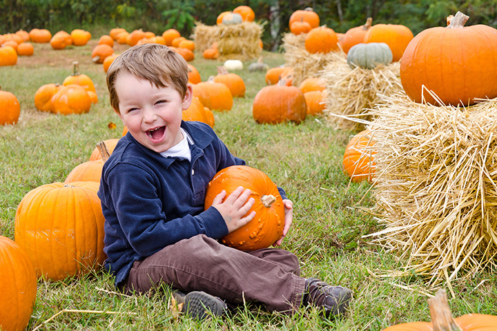 The 9 Best Pumpkin Patches in Louisiana!