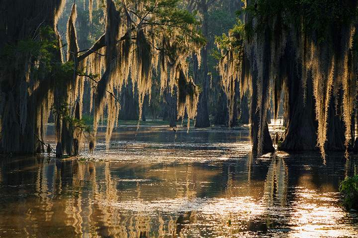The 14 Most Romantic Places in Louisiana!