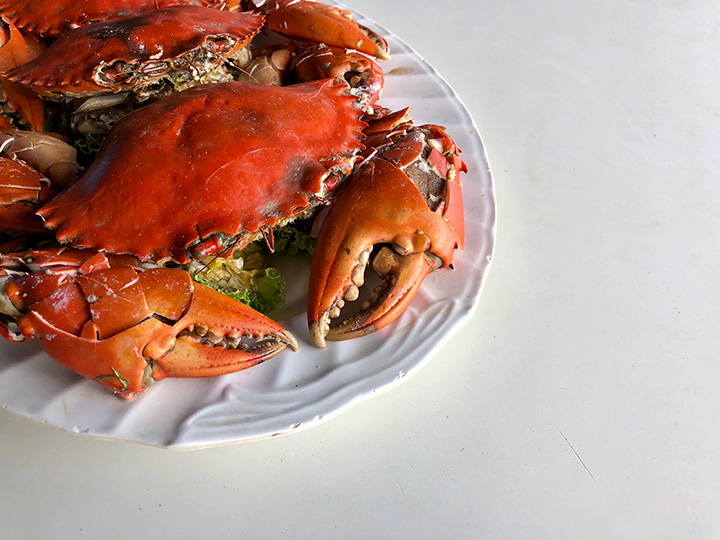 The 10 Best Places for Crab in Maine!