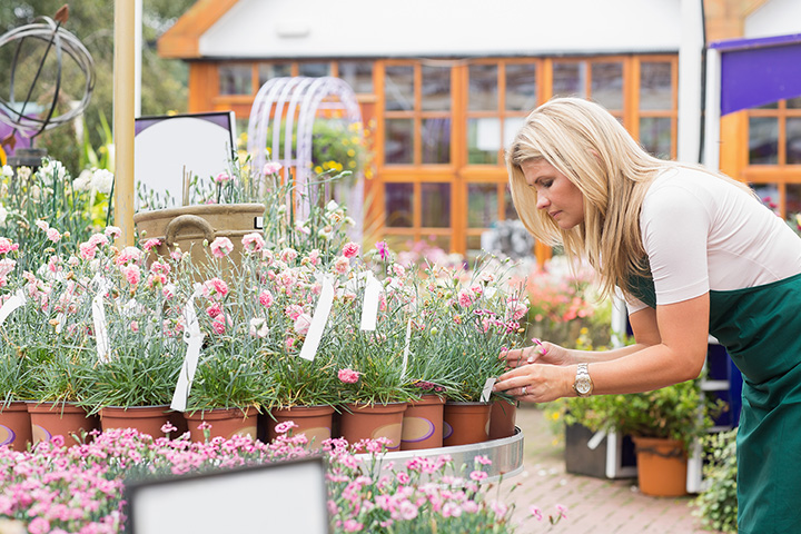 The 10 Best Garden Centers and Nurseries in Maine!