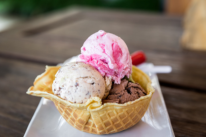 The 11 Best Ice Cream Parlors in Maine!