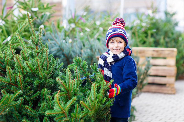 The 9 Best Christmas Tree Farms in Michigan!