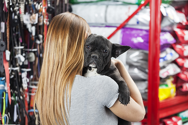 The 10 Best Pet Stores in Michigan!