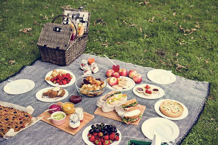 The 15 Best Picnic Spots in Michigan!