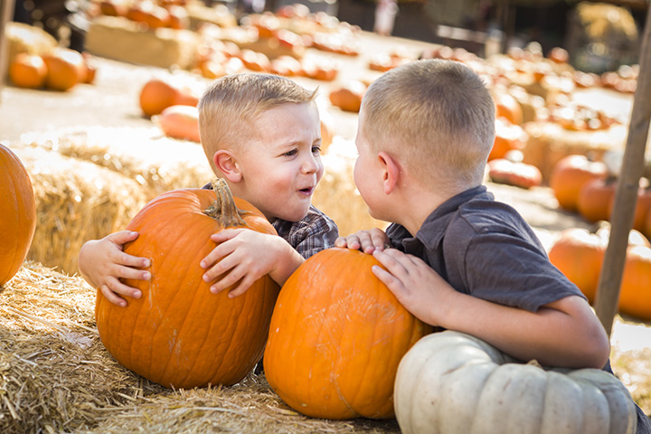 The 10 Best Pumpkin Patches in Michigan!