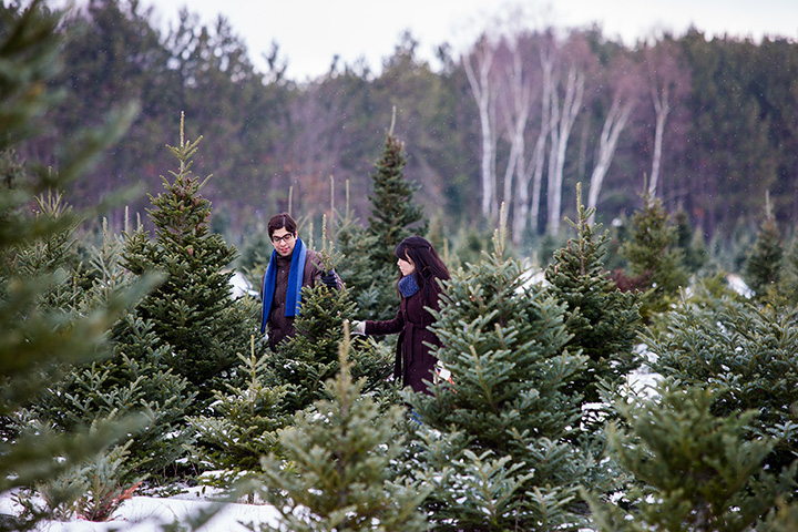 The 9 Best Christmas Tree Farms in Minnesota!