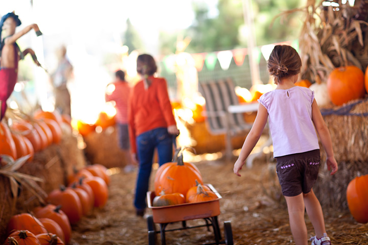 The 10 Best Fall Festivals in Missouri!