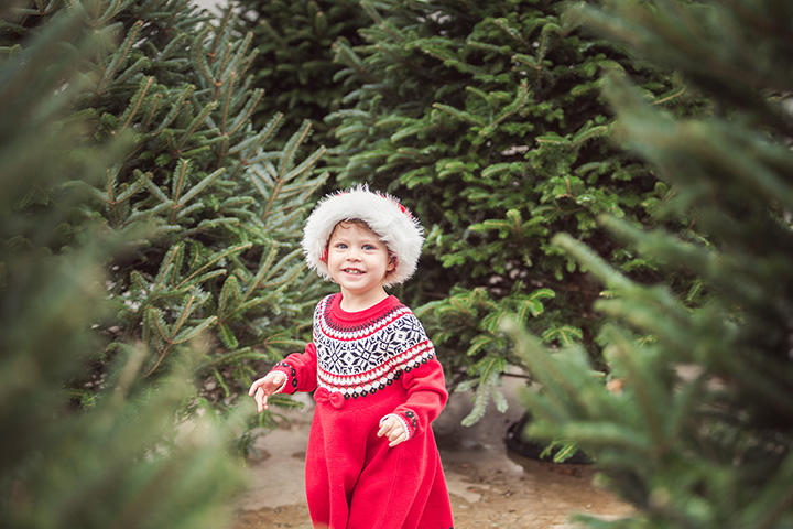 The 10 Best Christmas Tree Farms in Mississippi!