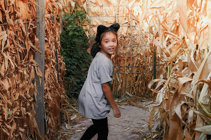 The 7 Best Corn Mazes in Mississippi!