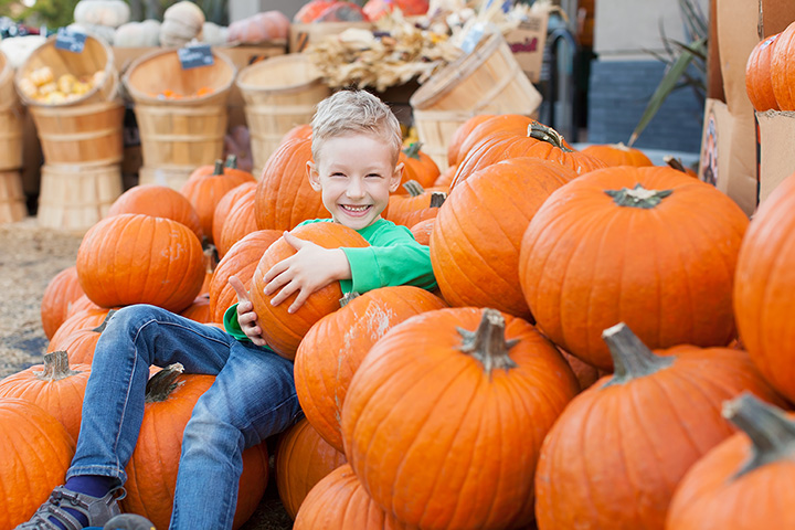 The 8 Best Fall Festivals in Mississippi!