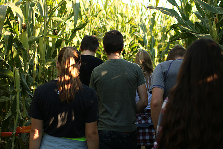 The 10 Best Corn Mazes in North Carolina!