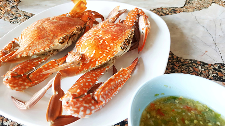 The 10 Best Places for Crab in North Carolina!