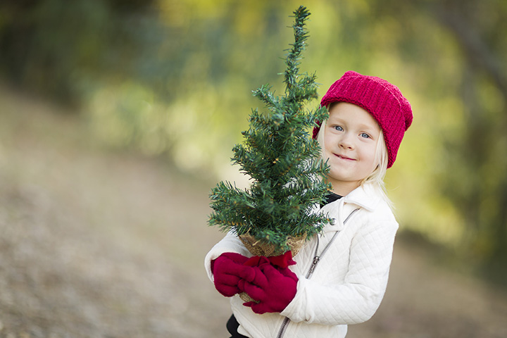 The 10 Best Christmas Tree Farms in Nebraska!