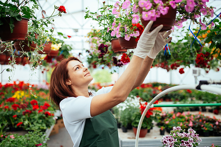 The 10 Best Garden Centers and Nurseries in Nebraska!