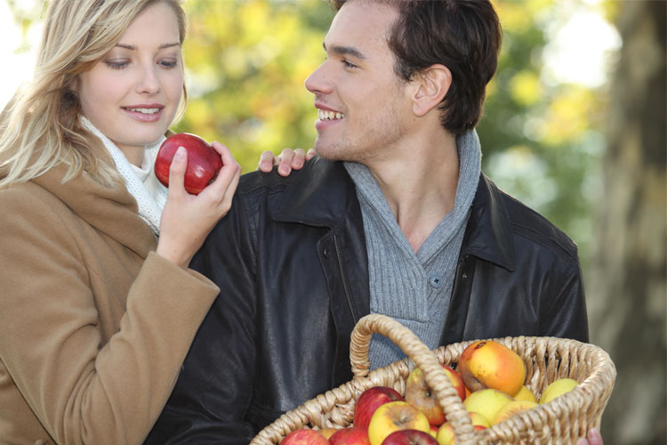 The 10 Best Apple Picking Spots in New Hampshire!