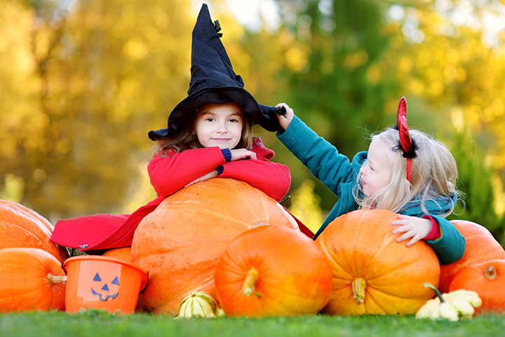 The 10 Best Pumpkin Patches in New Jersey!
