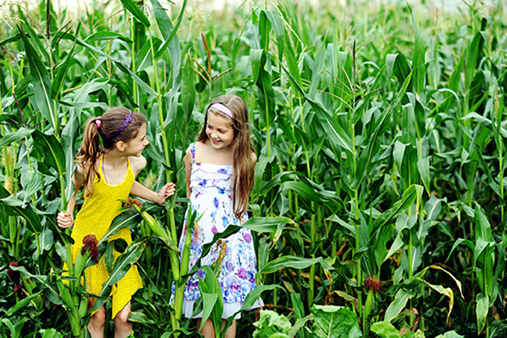 The 8 Best Corn Mazes in Oklahoma!