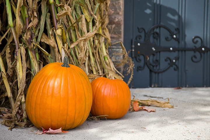 The 10 Best Pumpkin Picking Spots in Oklahoma!