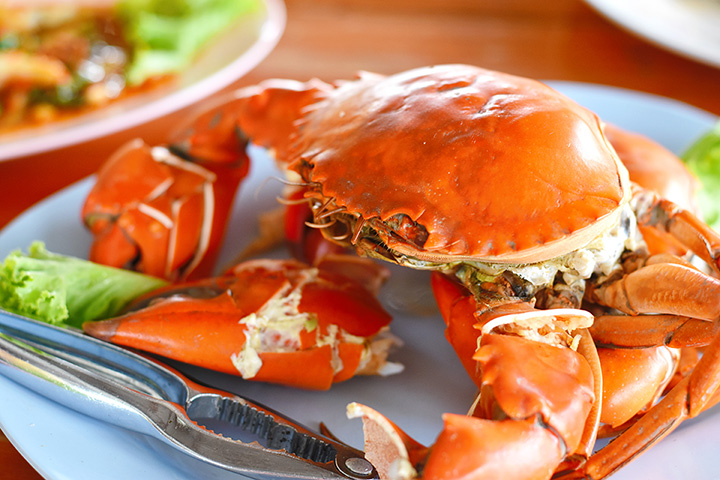 10 Best Places for Crab in Oregon