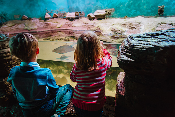 The 10 Best Educational Activities for Children in Oregon!