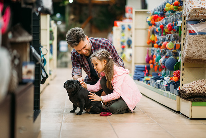 The 10 Best Pet Stores in Oregon!