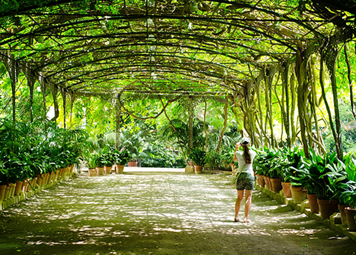 10 Beautiful Botanical Gardens in South Carolina!