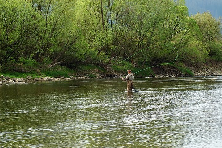 The 5 Best Fly Fishing Spots in South Carolina!