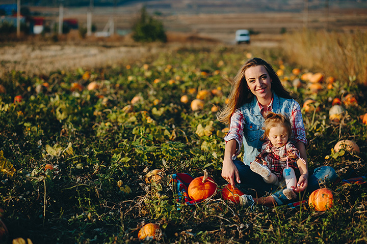 9 Best Pumpkin Patches in South Carolina