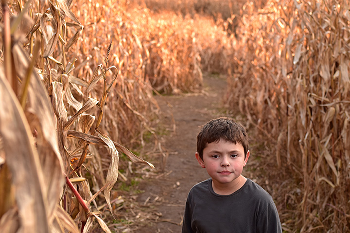 The 5 Best Corn Mazes in South Dakota!