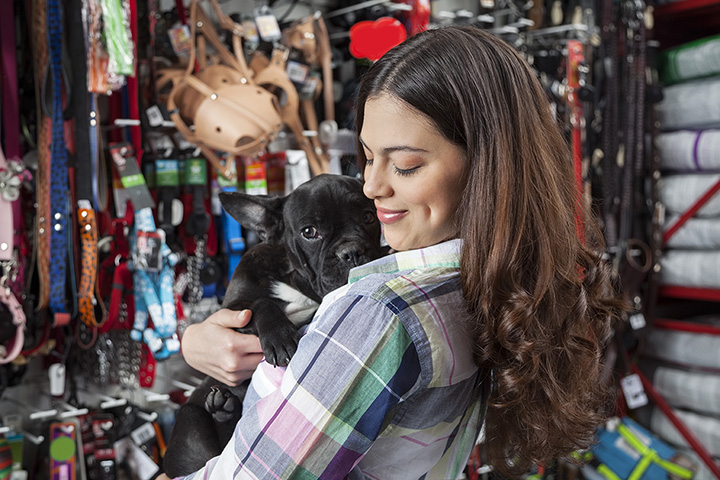 The 9 Best Pet Boutiques in Colorado!