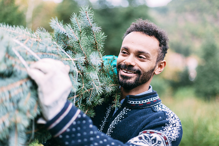 The 9 Best Christmas Tree Farms in Tennessee!