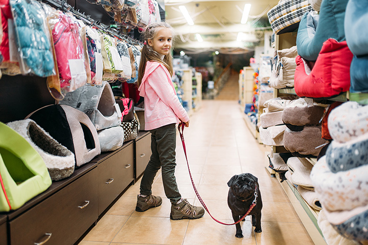 The 10 Best Pet Stores in Tennessee!